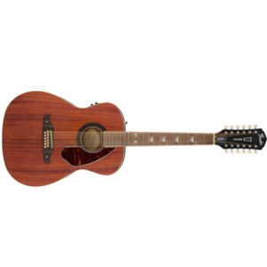 Twaalfsnarige western gitaar