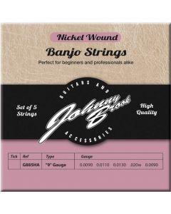 banjo snaren nickel wound 009 5 snarig