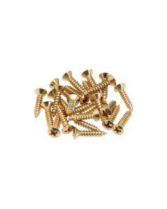 Fender slagplaat schroeven 24 stuks goud