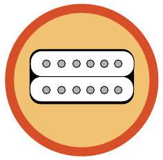 Welk gitaarelement kiezen